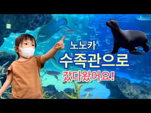 動画公開📺✨🐟  水族館に行ってきたよ🐠수족관으로 갔다왔어요🐠 I went to the aquarium 🐠 youtu.be/fnNzNh-92qA  #村方乃々佳 #ののかちゃん #노노카 #nonokamurakata #ののちゃんねる #ののちゃん