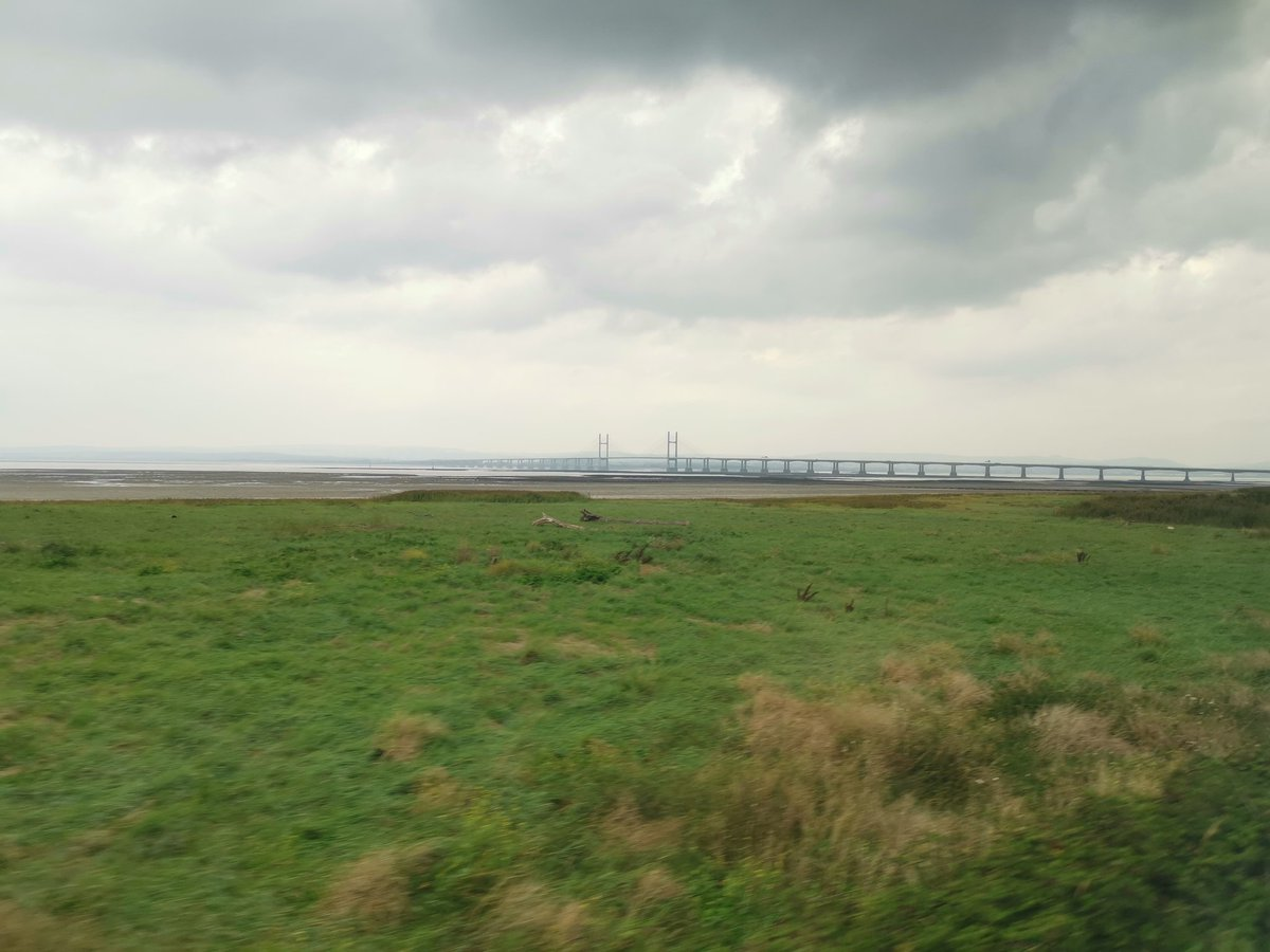Over there be dragons! Pleasantly surprised by the Severn Beach branch, worth waiting around for rather than just doing an Avonmouth