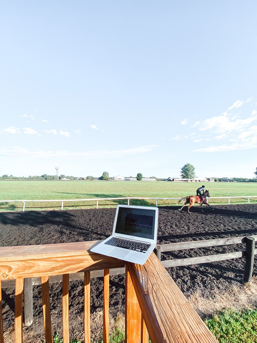 Doesn't get much better than this. 🏇💻🖤 #lovemyjob