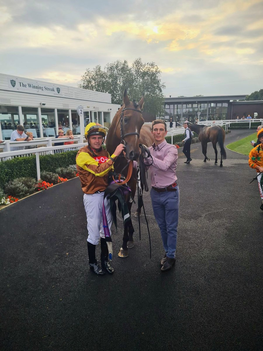 Saturday winner! 🟤🟡 FURZIG toughs it out at @CatterickRaces record his ninth win to date 💪! Many congratulations to owners Mr & Mrs P Ashton, jockey @Tonyhamilton83 and @E_Cagney for leading up 👏 💯   #Saturday #WINNER  #toughnut