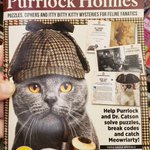 Image for the Tweet beginning: Purrrfect #Caturday reading material.