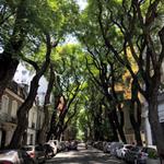 Image for the Tweet beginning: Se respira tranquilidad en Palermo