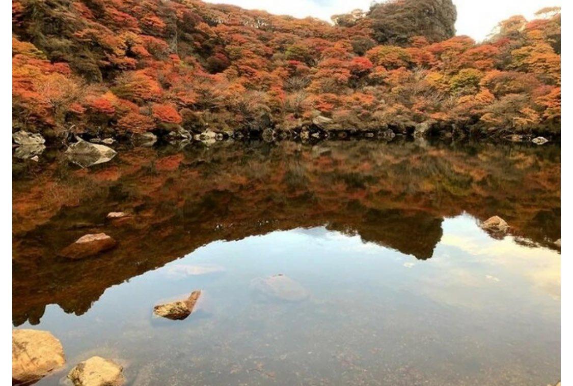 miyucha74204470 photo