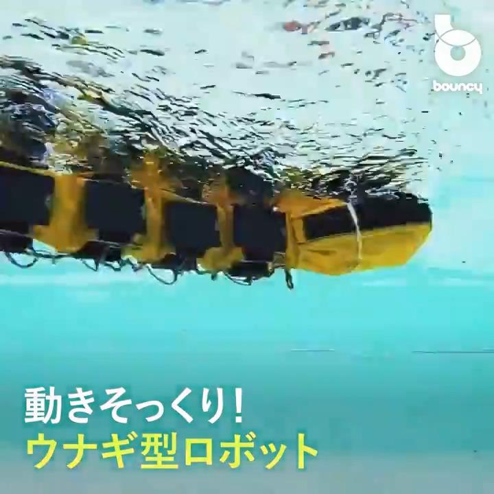 うねうね動くウナギ型水中ロボット!ヤツメウナギを模した波打つ身体を持つ「AgnathaX」 by EPFL詳しくはこちら👉#ロボット #ヤツメウナギ