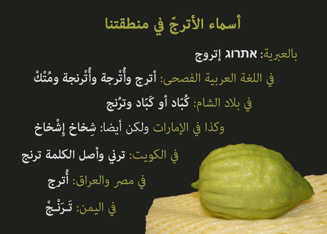 هل تعرف هذه الفاكهة التي تعتبر من رموز عيد المظلة؟ لن تصدق اي شبه هناك بين