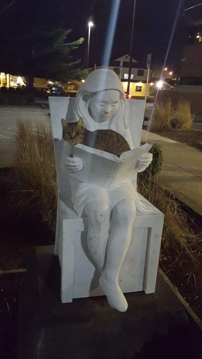 彫像ですら猫が近くにいると本を読めないと話題に