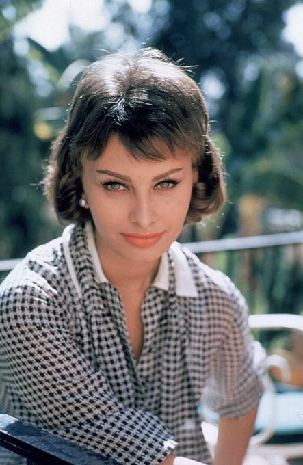 Happy birthday to the beautiful Sophia Loren - seen here in 1958. Photo by Richard C. Miller. ~