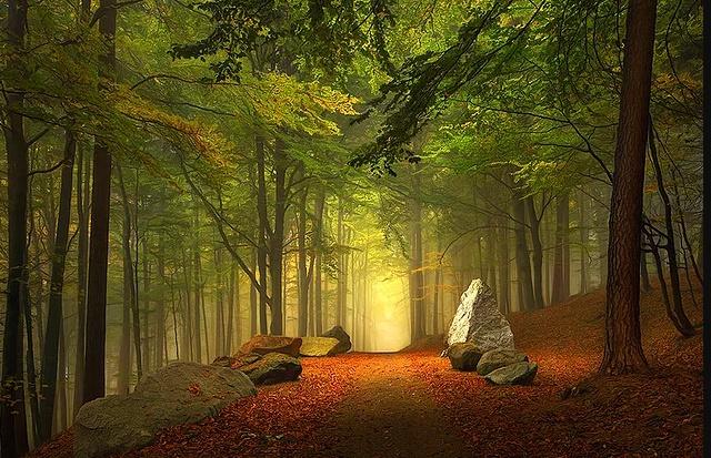 Rahman ve Rahîm olan Allah'ın adıyla Ey iman edenler! Size hayat verecek şeylere sizi çağırdığı zaman, Allah'ın ve Resûlü'nün çağrısına uyun ve bilin ki Allah, kişi ile kalbi arasına girer. Yine bilin ki, O'nun huzurunda toplanacaksınız. ENFAL Suresi 24. ayet