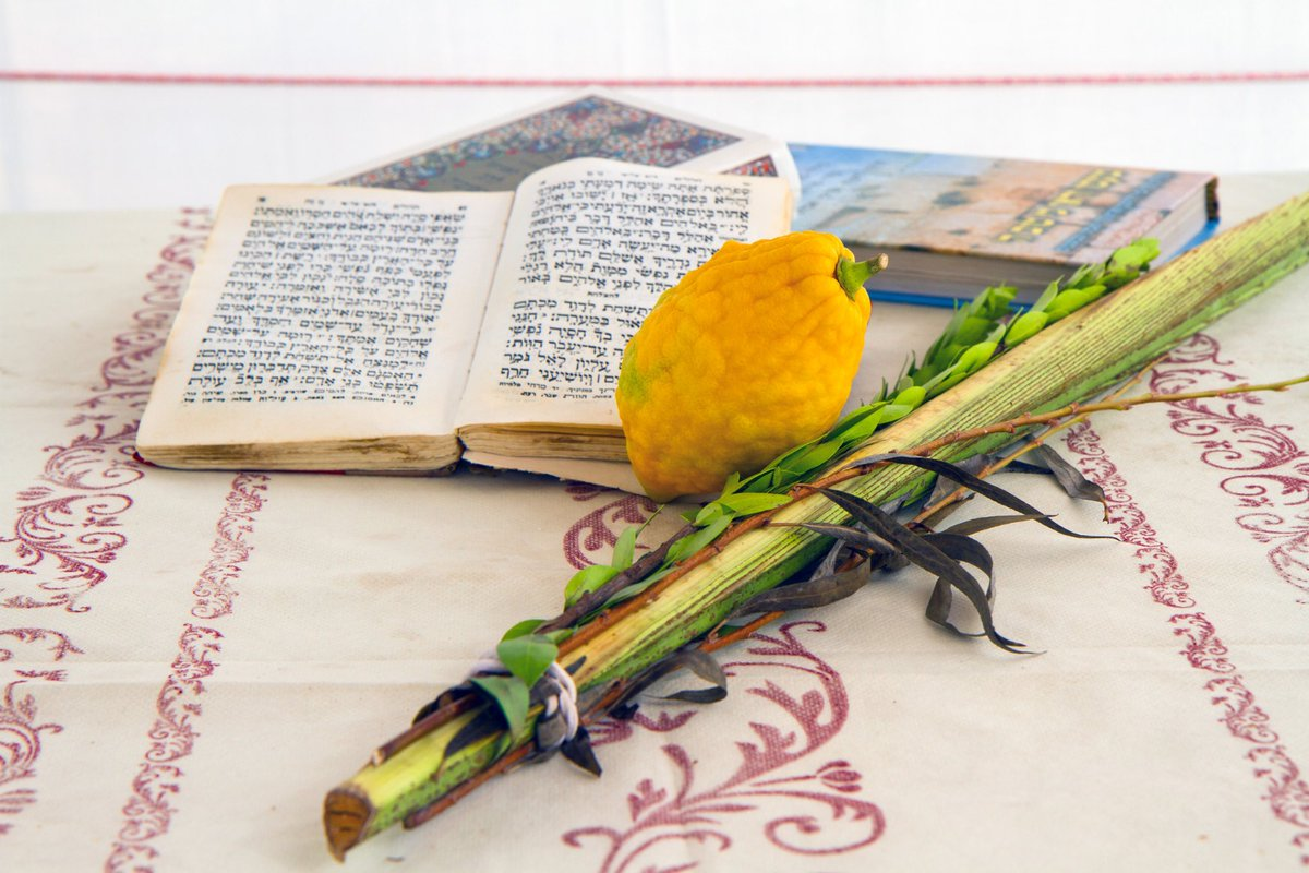 يستقبل اليهود اليوم عيد المظلة (سوكوت) ومن أبرز مميزاته:  – يستمر لمدة سبعة