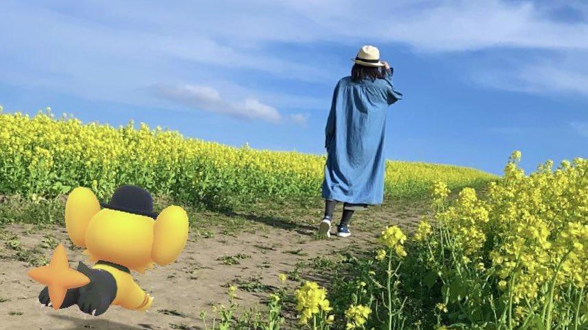 がめー★AR@北みやぎ〜南いわてさんの投稿画像