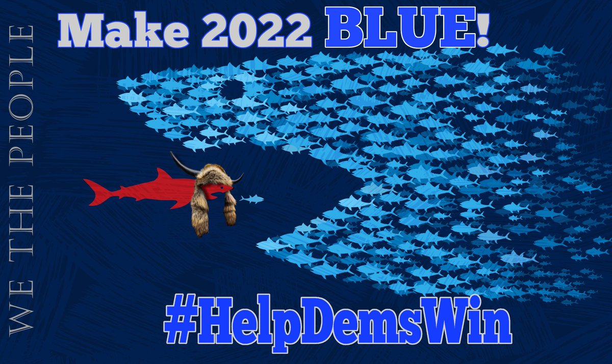 """Democratic turnout next year needs to be so large that Republicans don't dare attempt legislative shenanigans or another Arizona-style #Fraudit  #HelpDemsWin & keep """"Cyber Ninjas"""" out of our elections!  #wtpBLUE @wtpBLUE #wtp1012 https://t.co/bfjDIXCIcQ"""