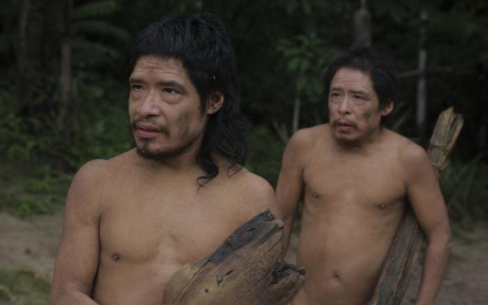 AmazoniaOrg photo