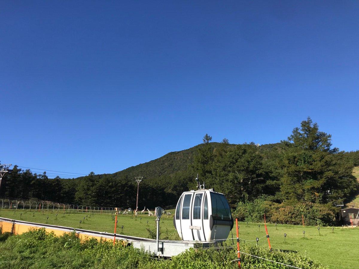 fukushimamomomo photo