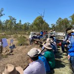 Great to be at the Wambiana Grazing Trial Field Day to learn about one Australia's most important grazing trials. This 25-year project has taught us so much about grazing successfully in the Australian Rangelands. Great day out sharing valuable information. @DAFQld @FutureBeef