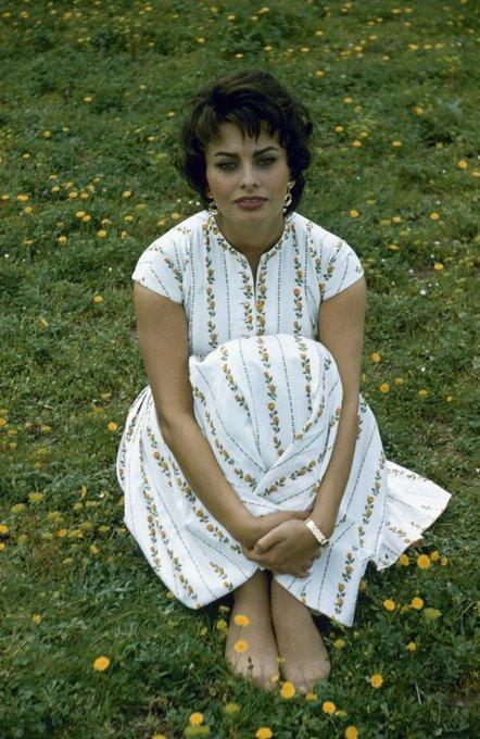 Happy 87th birthday to one of my favorite actresses, sophia loren.