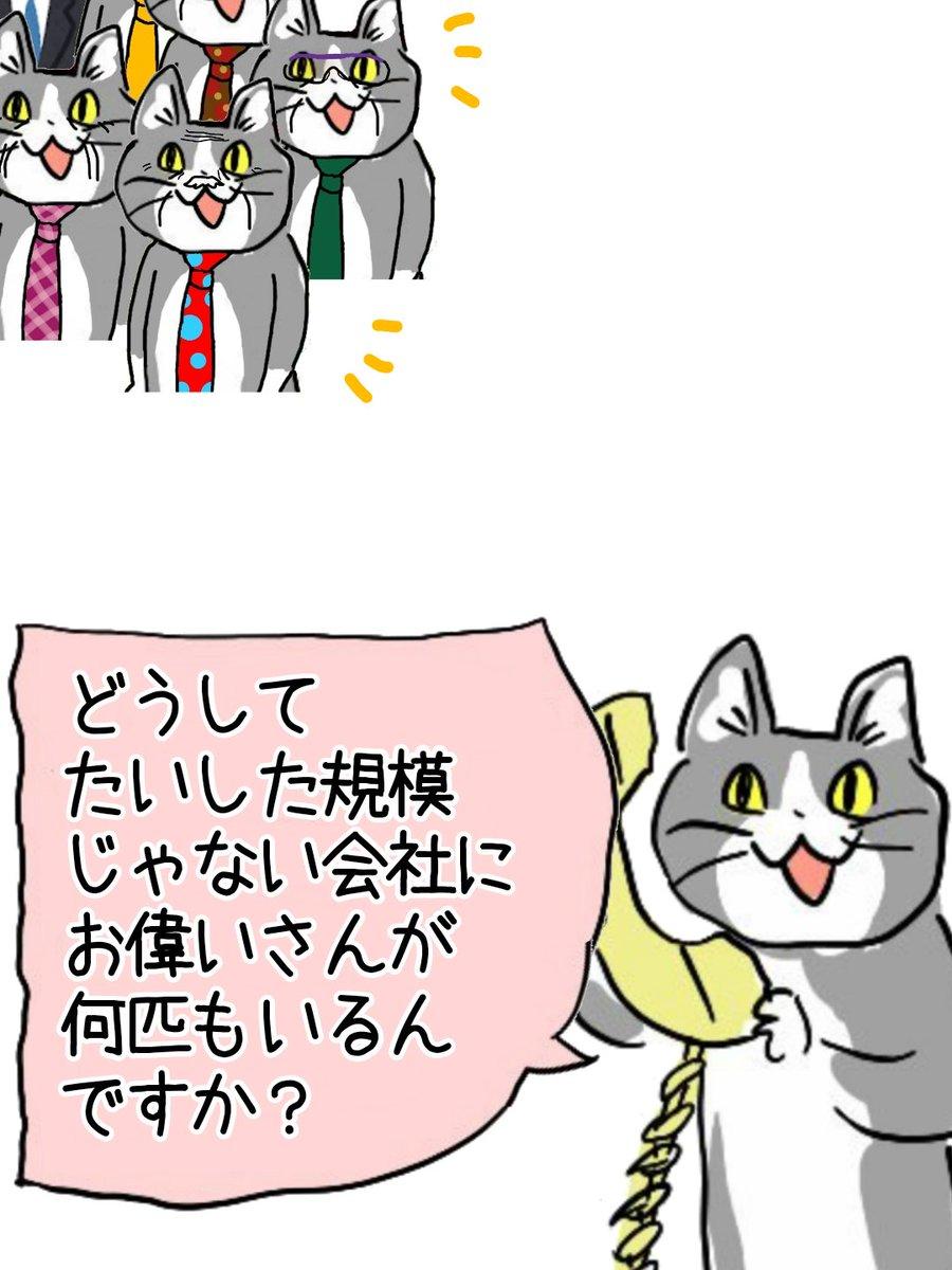 どうして…? #現場猫