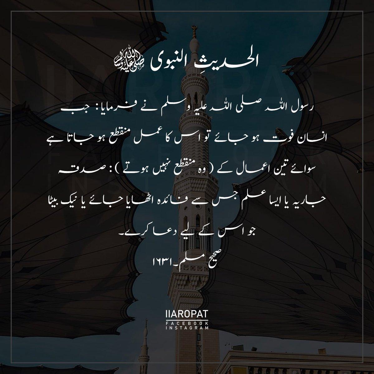 Sahih Muslim: 1631 . @iiaropat . #hadiths #hadeesoftheday #hadith #hadith4_life #hadithoftheday #hadithreminder #messengerofallah #allah #hadithquotes #ENGvsIND #ENGvNZ #NationalT20Cup #big3 #BreakingNews #منگنی_مبارک_مریم #Inshallah #iiaropat
