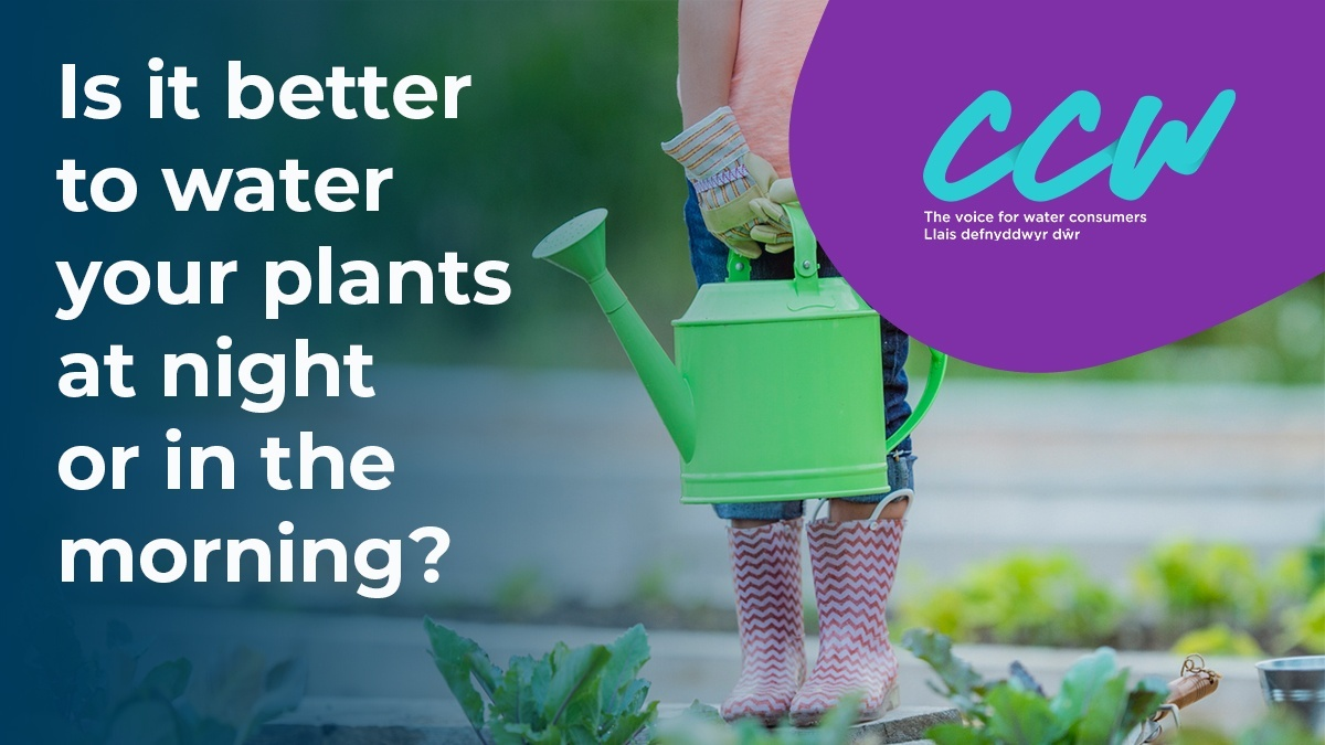 How can gardeners best adapt to climate change? Watch @The_RHS water specialist Janet Manning give her 5 top tips for using water more efficiently in gardens and allotments: orlo.uk/7gy56 #WatersWorthSaving #ChelseaFlowerShow @Waterwise