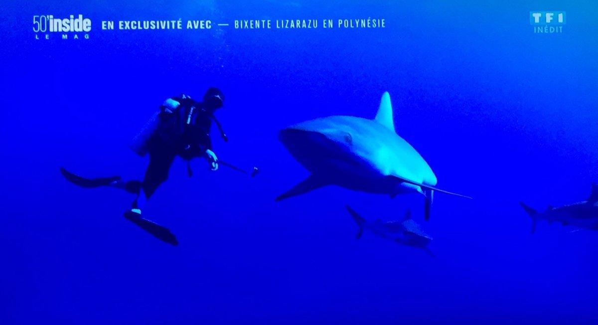 C'était bien joli cher @BixeLizarazu hâte de voir le documentaire 🐬  @50inside https://t.co/5YUFLQT6vd