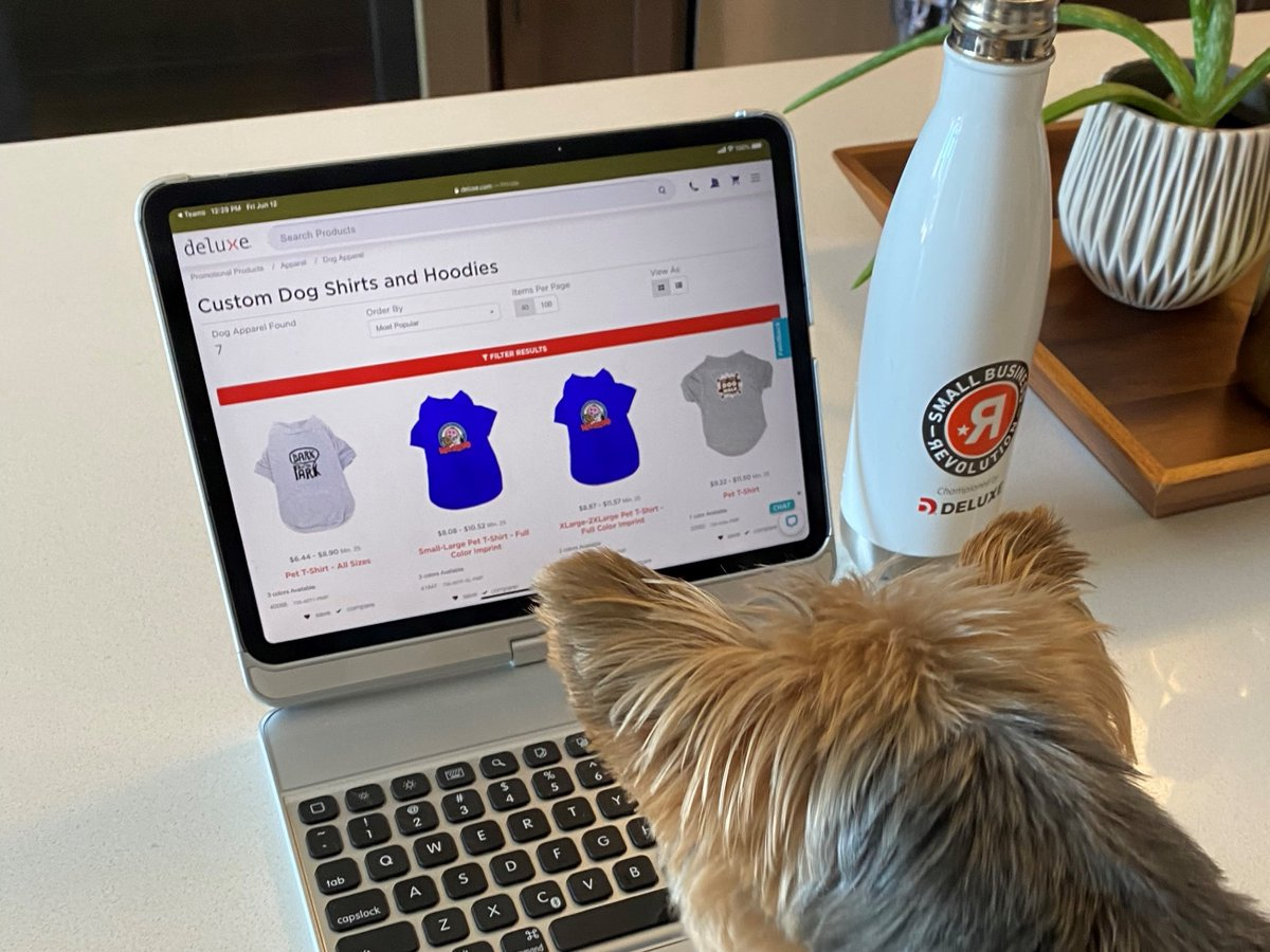 They're not technically on the payroll, but your work-from-home employees' furry friends have been doing a great service keeping everyone company. They should be wearing your colors. Find options for branded Fido finery, here: https://t.co/th1wAo4X26 https://t.co/oKmvO9PNwn