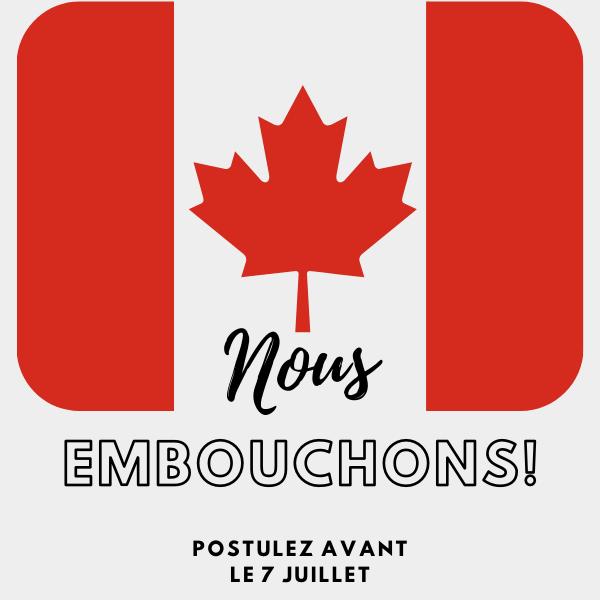 📢Êtes-vous un résolveur de problèmes organisé et soucieux du détail? L'ambassade du Canada 🇨🇦 recherche un adjoint de programme (ERP-05) pour l'équipe de coopération au développement.  Postulez avant le 7 juillet: https://t.co/5NIs3RpsrY https://t.co/MKjQNBJkdM