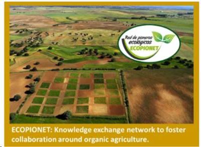 15 proyectos europeos finalistas de los premios Rural Inspiration Awards 2020, entre ellos uno español #ECOPIONET apoyado por el MAPA con fondos FEADER. El proyecto se ejecuta en varias provincias españolas. Vota en el siguiente enlace https://t.co/01e31rLpHE https://t.co/1P2g2SFcGD