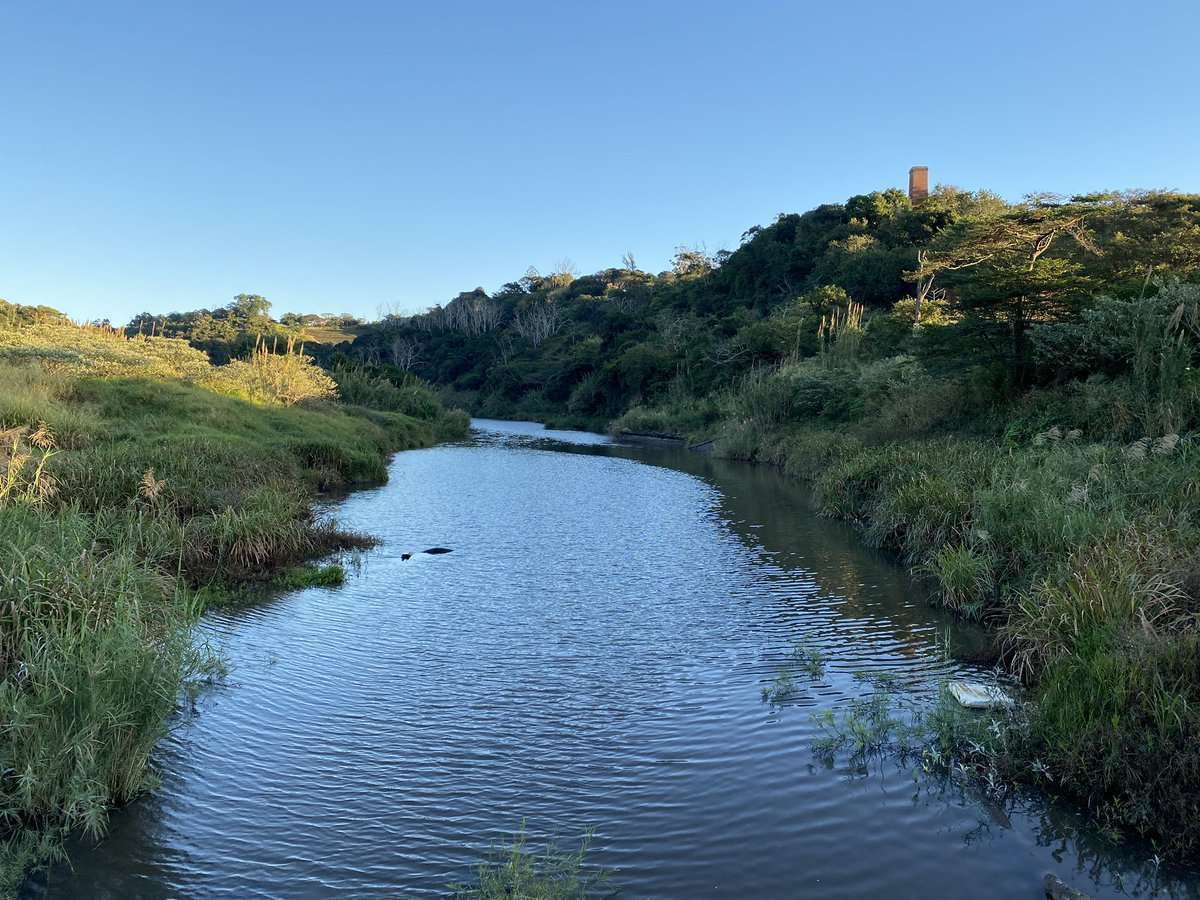 Some photos from my run this morning. Winter in South Africa is manageable 🏃🏽♂️👌🌳🌞🇿🇦 https://t.co/XTP3xR6pKf