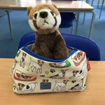 The 4U panda is packing his pencil case ready for you to return! We can't wait to see you all, we hope you are looking forward to coming back to school!