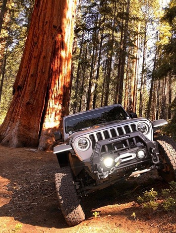 Kicking #frontendfriday off in the wild! PC: gr8whitejl https://t.co/Ow3In5DkA0