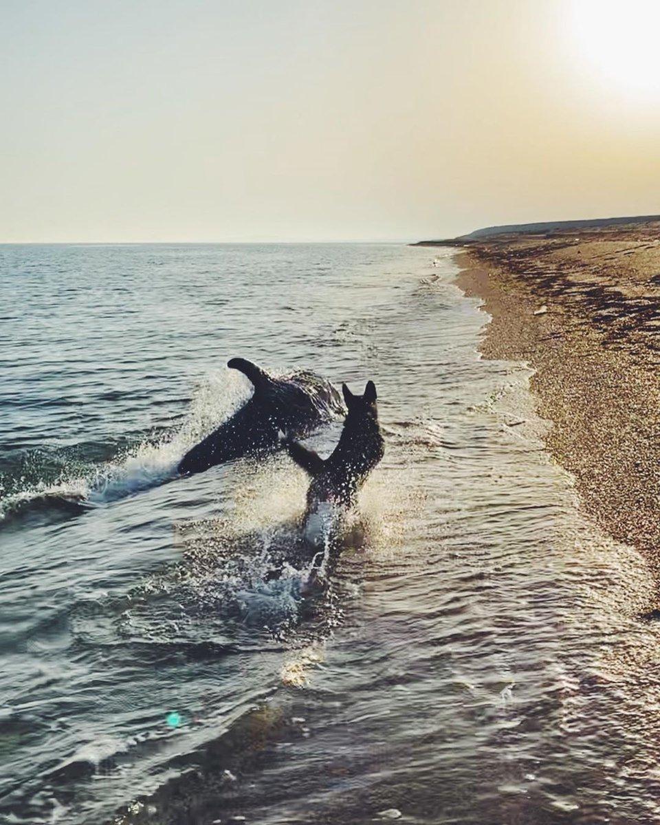 приготовить карамельный пляж волна темрюк фото дельфины пивом меня более