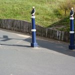 Image for the Tweet beginning: @Phil_PJA @Schopflin @WorldBollard @AbundanceLondon @CHAIRRDRF