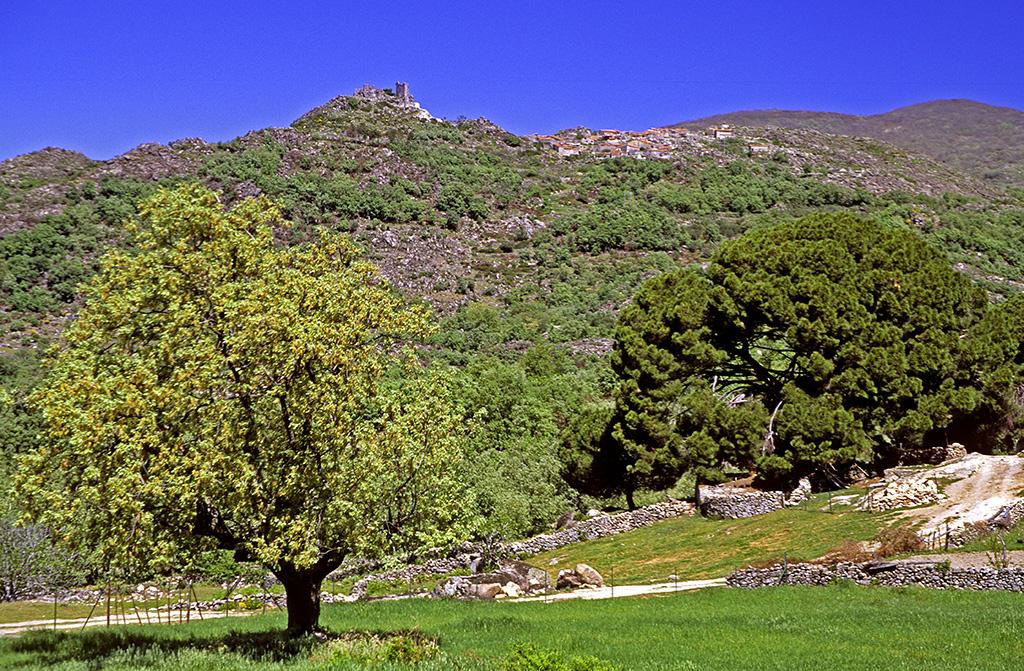 LO QUE NOS ESTA ESPERANDO A LA VUELTA!!! ¿Añoras disfrutar de los tesoros de este país? Os invitamos a hacer un viaje virtual por España.  SIERRA DE GATA. CÁCERES. EXTREMADURA #ElArtedeViajarenMoto @Turismo_DipCC @Extremadura_tur @bmwmotorradesp @CanonEspana @ViajesNUBA @spain https://t.co/bNdOdZ1RBZ