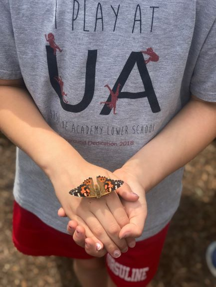 """At @UAwilmington each grade has a designated topic assigned to """"wander and wonder"""" about. @DEDeptofEd @GreenBldgUnited @ENERGYSTAR @NWF https://t.co/F2EtX0yFWI"""