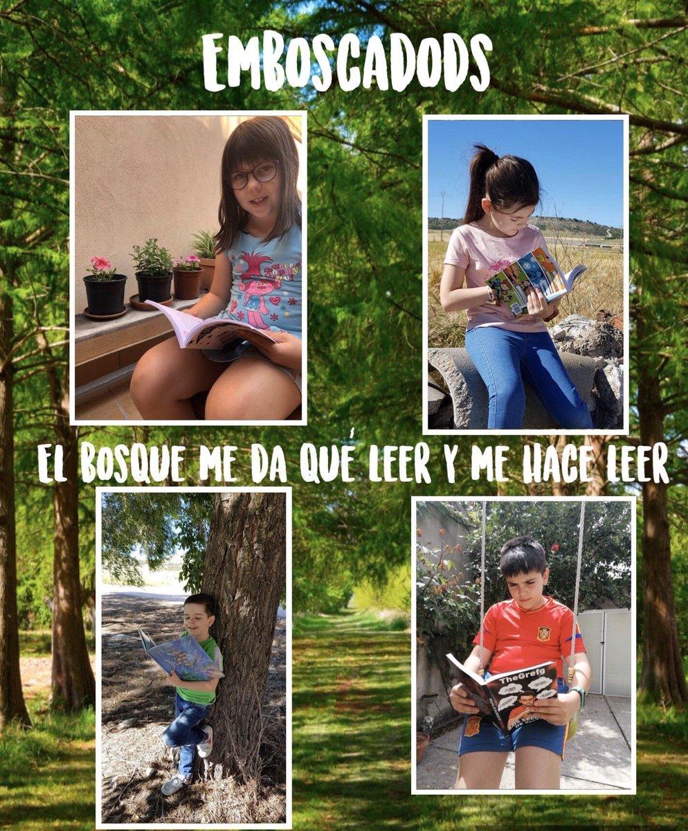 #EmboscadODS, nuestros niños y niñas aprovechan para leer y disfrutar de la naturaleza. #PlanLector #ProyectoSalacia #centroeducativosostenible. @Hoy_Libro @educacyl @madelgador @OliviaRoMu @ccnn1_CFIEVA @cfievalladolid @SEO_BirdLife @EducacionSEO #HéroesLibera https://t.co/YcKOt30WmR