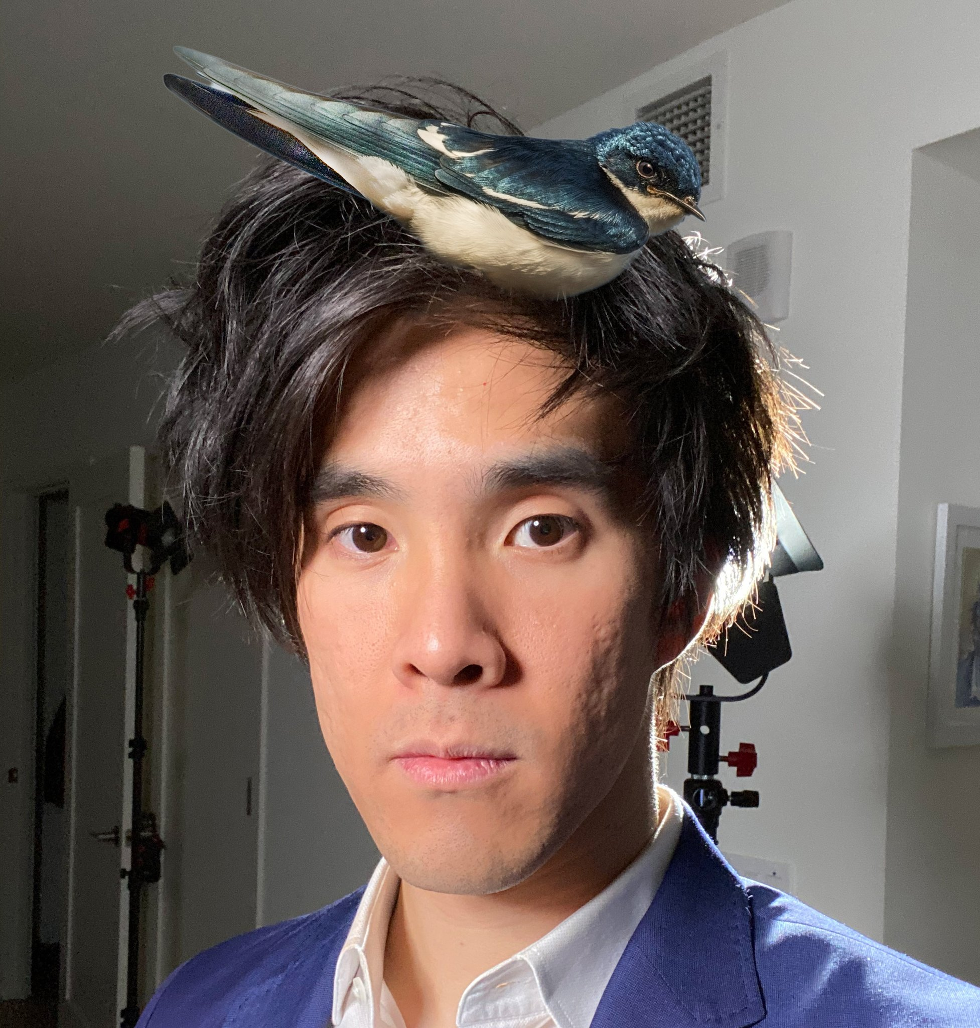 Chubbyemu On Twitter Nature Is Healing Chubbyemu is the nickname of youtuber bernard hsu who is primarily known for his popular analysis and explanation of medical cases. chubbyemu on twitter nature is