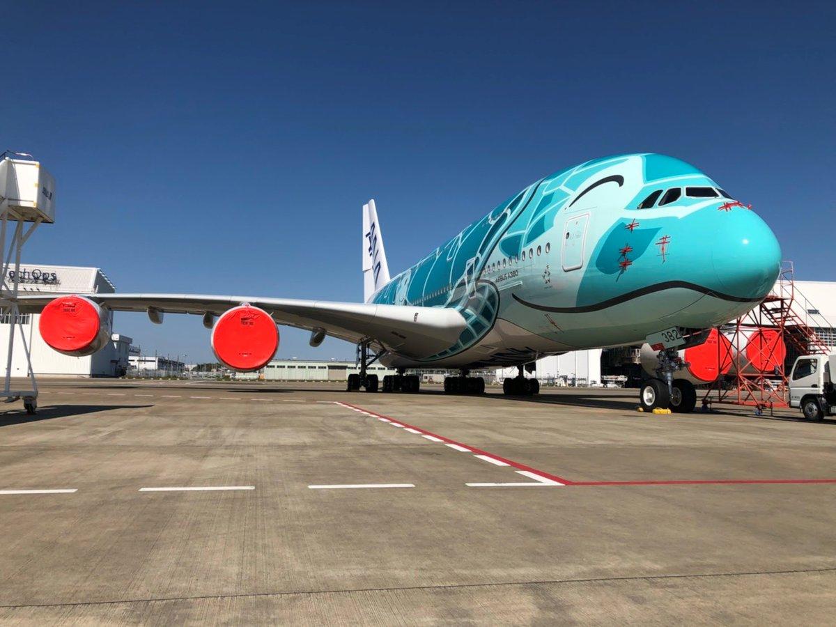 【青空に恋💙した人々】 今日もHONUはご機嫌に外出自粛中です。 私たちパイロットは、いつでもHONUと共に大空に戻れるよう身体検査やライセンス維持を行っています。資格維持はフライトシミュレーターを使用し、A380に関する最新情報を都度キャッチし準備を整えています✈️ #ふたたび大空を飛ぶために