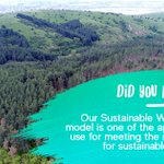 Image for the Tweet beginning: Our Sustainable Working Forest model