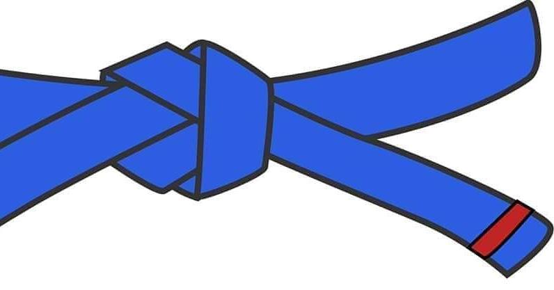 Tuesday Taekwondo!  Looking forward to a very busy class today on Zoom 5:30 Blue Belt Red Tag  #uktc #WITC #Dunfermline #taekwondo #littletigercubs #activetigers #Cowdenbeath #Leven #johnmarshallcommunitycentre #Baldridgeburn #BalmaiseCentre #trinitychurch #uktctaekwondo #uktctkdpic.twitter.com/2FE6eC7DNI