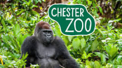 Hurrah ... Zoos and Safari Parks to open immediately #chesterzoo #Knowsleysafaripark et al !! Fantastic collective lobbying paid off ! Best news today ! @Iromgpic.twitter.com/X5SB13zH2N