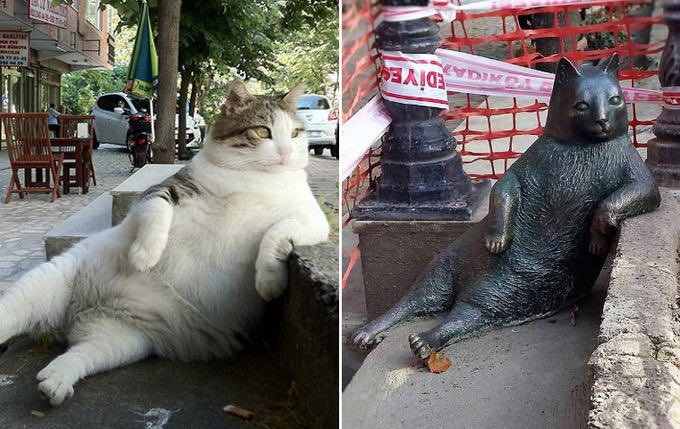 Tombili was a local celebrity cat from Istanbul famous for his very relaxed posture. When he passed, locals erected a statue in his honor. https://t.co/vVqpyIIe7c https://t.co/BJCIoKdn30