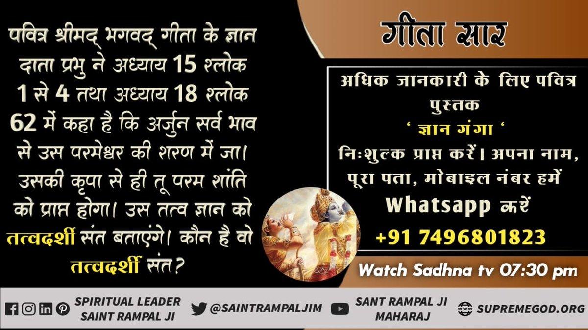#ThursdayMotivation गीता ज्ञान दाता ने अर्जुन को किस परमेश्वर की शरण में जाने को कहा है। वह परमेश्वर कौन है?  यह जानने के लिए अवश्य देखें  श्रद्धा टीवी दोपहर 2:00 बजे
