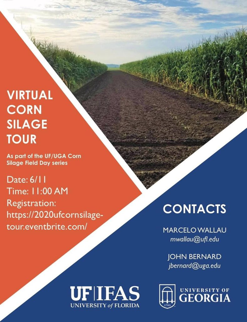 Don't miss the Virtual Corn Silage Tour on 6/11 at 11 AM. Register at 2020ufcornsilage-your.eventbrite.com