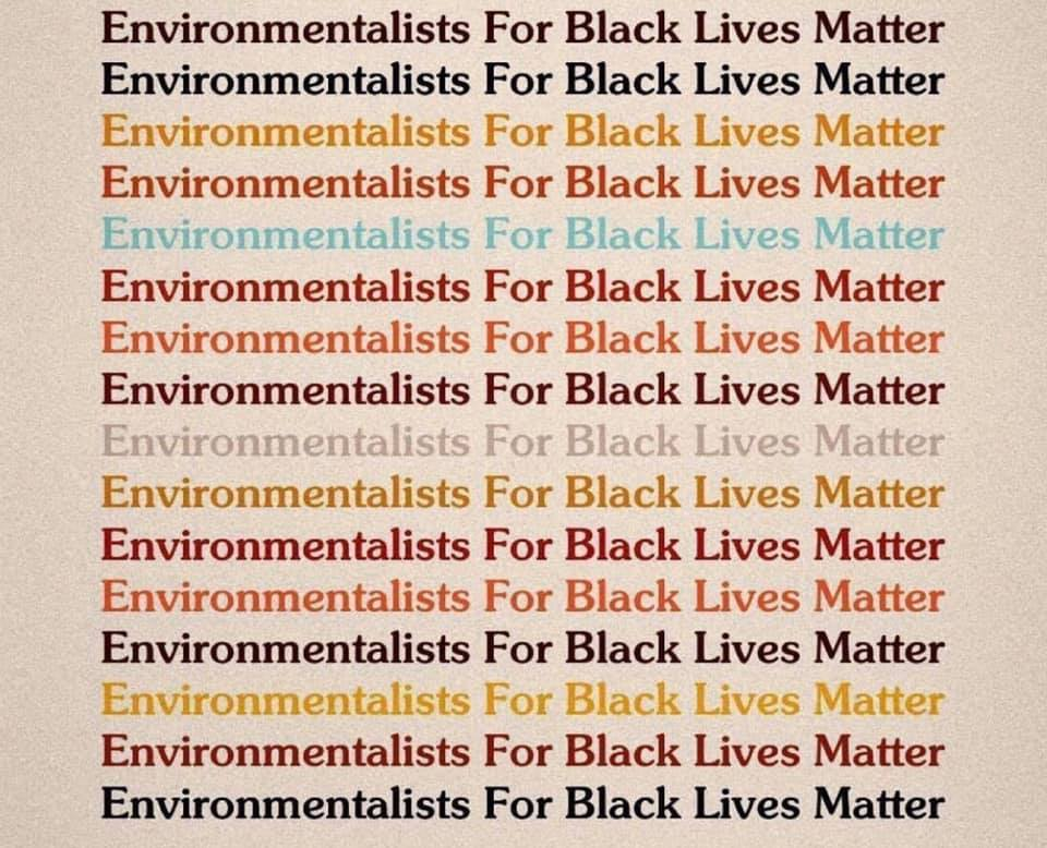 Fight for #EnvironmentalJustice. Fight for Black lives. #BlackLivesMatter