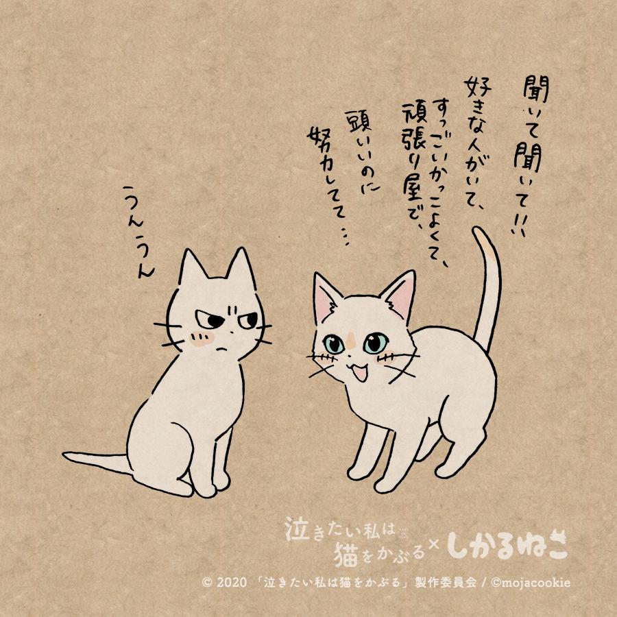 かぶる 猫 は 泣き を 私 たい