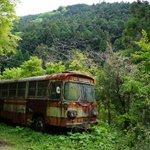 廃バスに引かれる理由「ずっとお客を乗せて走っていたバスが突然山中に連れられて、捨てられてしまうから」