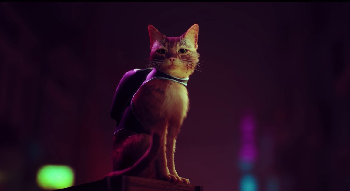 'Stray' is a futuristic cat simulator for PS4 and PS5