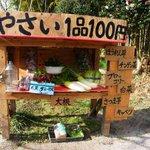 「無人販売野菜」が成り立つ日本はやっぱり凄い!
