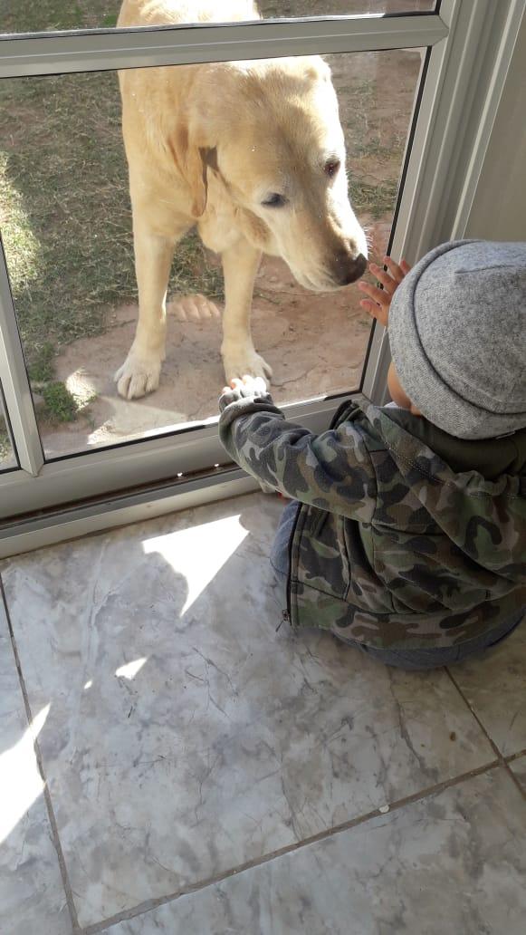 Hola buen sábado. Desde Recreo.Catamarca. Mi nietito Brunito y Ciro. ❤❤😍 #YoMeQuedoEnCasa https://t.co/TkXz1a8130