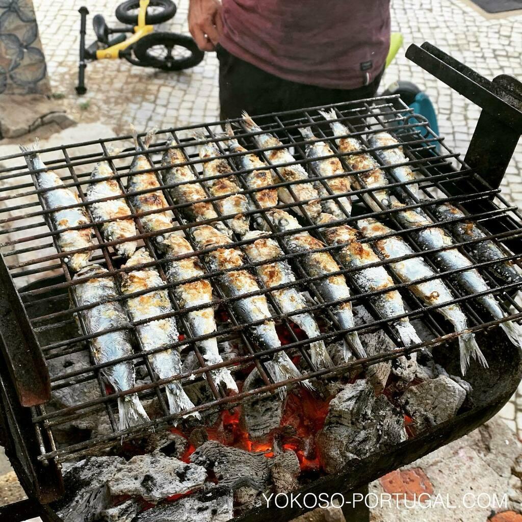test ツイッターメディア - 昨日行われるはずだったイワシ祭りは中止のため、家でイワシ祭りしてみました。 #イワシ #リスボン #ポルトガル https://t.co/Li8NZ8RUwB