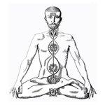 Image for the Tweet beginning: #esoterisme #yoga #prana  LA SCIENCE DU